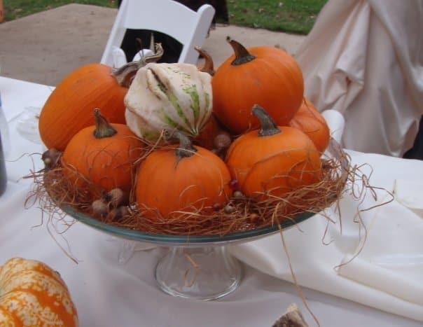 PumpkinCenterpiece